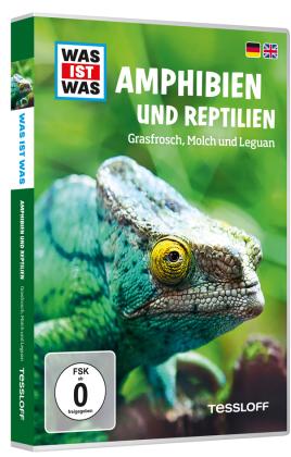 Amphibien und Reptilien, 1 DVD