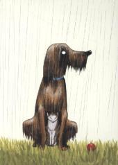 Regen, Postkarten