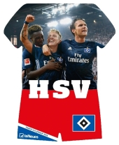 Hamburger SV 2018