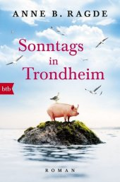 Sonntags in Trondheim Cover