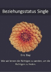 Beziehungsstatus Single