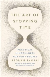 Art of Stopping Time