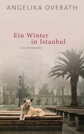 Ein Winter in Istanbul Cover