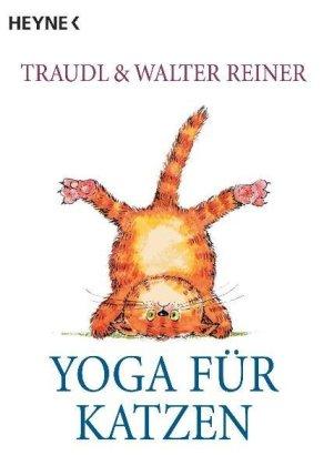 Yoga für Katzen