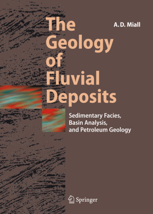 The Geology of Fluvial Deposits