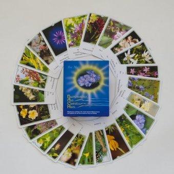 Blütenkarten als Chance und Hilfe