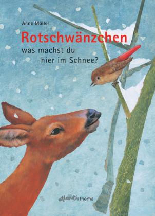 Rotschwänzchen was machst du hier im Schnee?