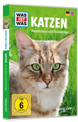 Katzen, 1 DVD