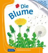 Die Blume Cover