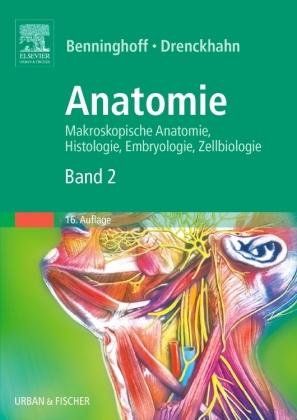 Herz-Kreislauf-System, Lymphatisches System, Endokrine Drüsen ...