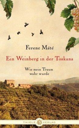 Ein Weinberg in der Toskana