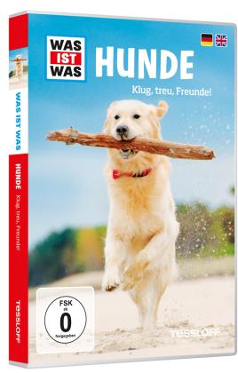Hunde, 1 DVD