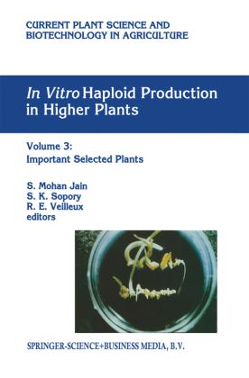 In vitro Haploid Production in Higher Plants
