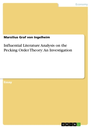 Influential Literature Analysis on the Pecking Order Theory: An Investigation