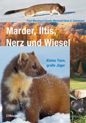 Marder, Iltis, Nerz und Wiesel Cover