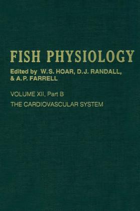 The Cardiovascular System, Part B