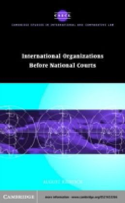 International Organizations before National Courts