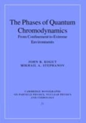 Phases of Quantum Chromodynamics