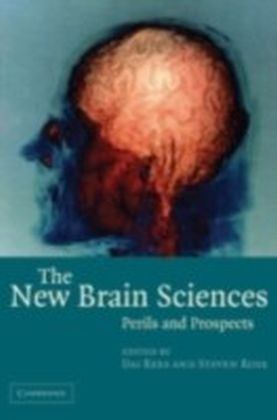 New Brain Sciences
