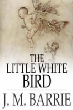 Little White Bird