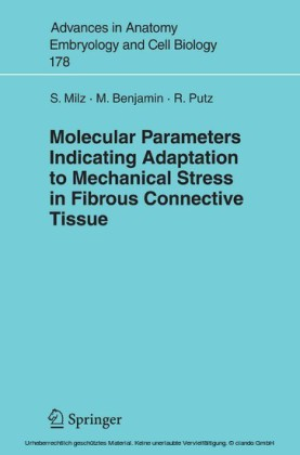 Molecular Parameters Indicating Adaptation to Mechanical Stress in Fibrous Connective Tissue