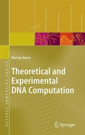 Theoretical and Experimental DNA Computation