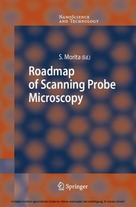 Roadmap of Scanning Probe Microscopy