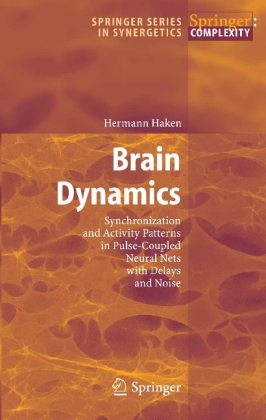 Brain Dynamics - Synchronization and Activity Patterns in Pulse-Coupled Neural Nets with Delays and Noise