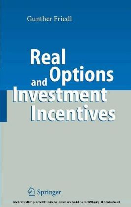 Real Options and Investment Incentives