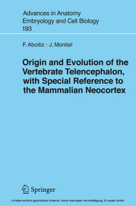 Origin and Evolution of the Vertebrate Telencephalon, with Special Reference to the Mammalian Neocortex