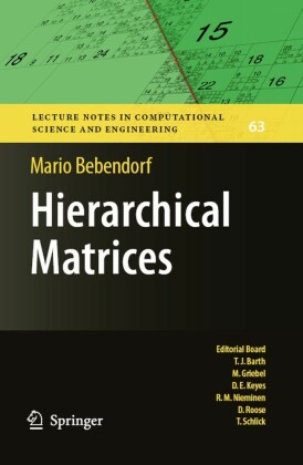 Hierarchical Matrices