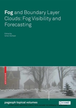 Fog and Boundary Layer Clouds