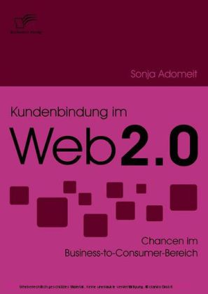 Kundenbindung im Web 2.0. Chancen im Business-to-Consumer-Bereich