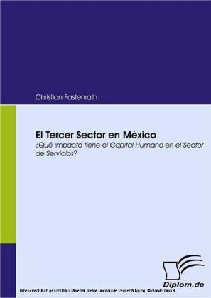 El Tercer Sector en México. ¿Qué impacto tiene el Capital Humano en el Sector de Servicios?
