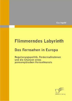 Flimmerndes Labyrinth: Das Fernsehen in Europa - Regulierungspolitik, Fördermaßnahmen und die Chancen eines paneuropäischen Fernsehkanals