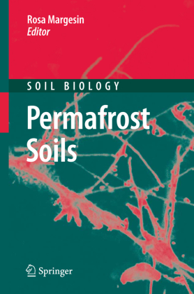 Permafrost Soils