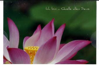 Lotus: Spiegel der Seele, Kunstkarten