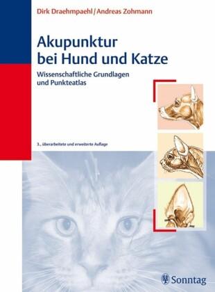 Akupunktur bei Hund und Katze