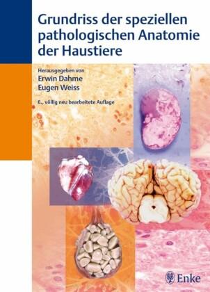 Grundriß der speziellen pathologischen Anatomie der Haustiere
