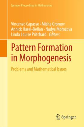 Pattern Formation in Morphogenesis