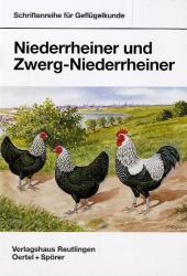 Niederrheiner und Zwerg-Niederrheiner