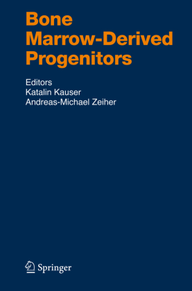Bone Marrow-Derived Progenitors