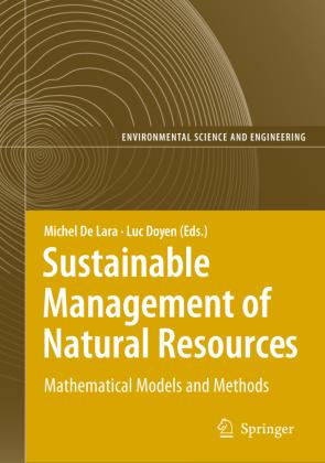 Information Technologies in Environmental Engineering