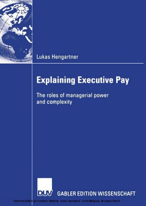 Explaining Executive Pay