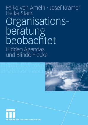 Organisationsberatung beobachtet