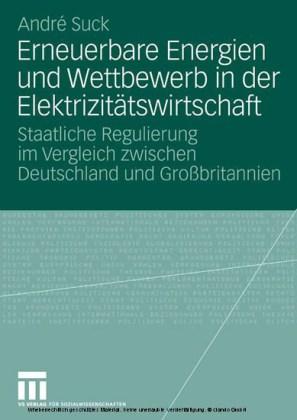 Erneuerbare Energien und Wettbewerb in der Elektrizitätswirtschaft