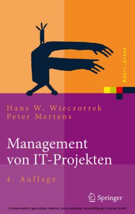 Management von IT-Projekten