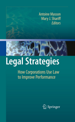 Legal Strategies