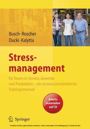Stressmanagement für Teams in Service, Gewerbe und Produktion - ein ressourcenorientiertes Trainingsmanual