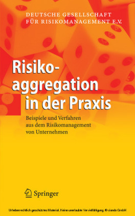 Risikoaggregation in der Praxis